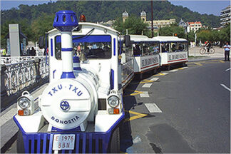 Txu Txu train